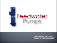 Feedwater Pumps