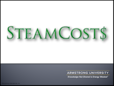 Steam Costs