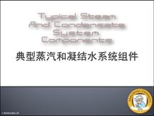 典型蒸汽和凝结水系统组件简介
