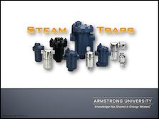 Steam Traps