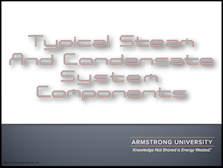 Typical Steam and Condensate System Components